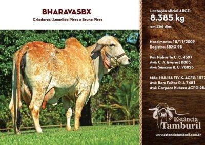 BHARAVA SBX