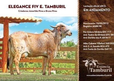 ELEGANCE FIV E.TAMBURIL