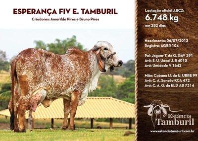 ESPERANÇA FIV E.TAMBURIL
