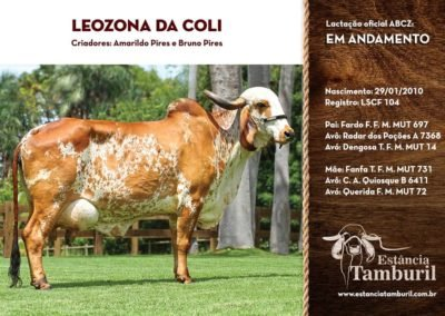 LEOZONA DA COLI