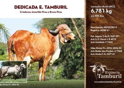 DEDICADA E.TAMBURIL