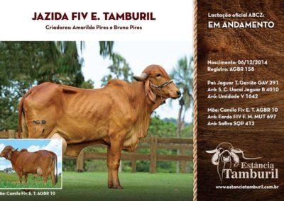 JAZIDA FIV E.TAMBURIL