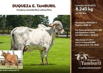 DUQUEZA E.TAMBURIL