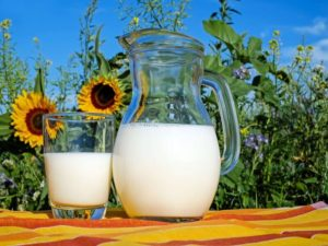 leite tipo a2a2