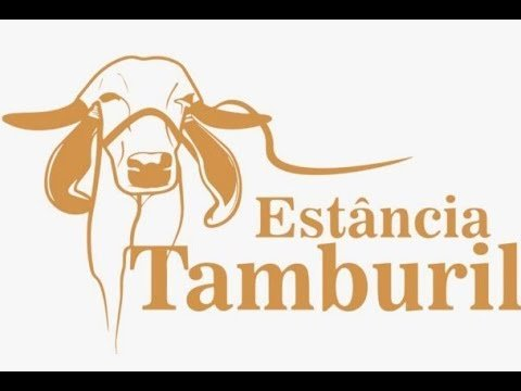 video estancia tamburil