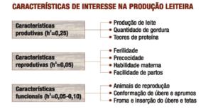 caracteristicas-producao-leiteira-300x154