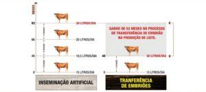 biotecnologia-grafico
