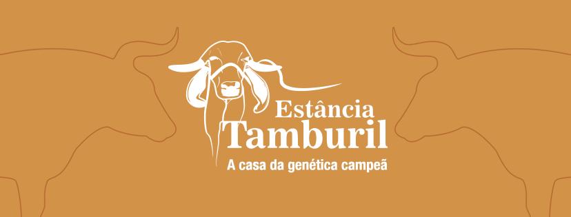 capa-tamburil